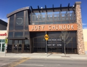 Joey Chinook 1